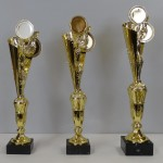 Кубок S10C g75/B236 st/42 - 50.00 руб Кубок S10B g75/B236 st/44 - 51.00 руб Кубок S10A g85/B236 st/47 - 55.00 руб