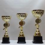Кубок S12C PL71/12/32 - 35.00 руб Кубок S12B PL70/14/36 - 42.00 руб Кубок S12A PL69/16/40 - 50.00 руб