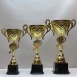 Кубок S12C PL71/U12/36 - 47.00 руб Кубок S12B PL70/U14/40 - 55.00 руб Кубок S12A PL69/U16/44 - 70.00 руб