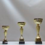 Кубок S18C g55/08/21 - 16,50 руб Кубок S18B g65/09/26 - 19,50 руб Кубок S18A g75/10/30 - 21,50 руб