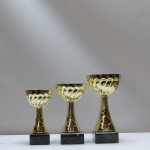 Кубок S19C g55/08/16 - 9,50 руб Кубок S19B g65/09/17 - 11,50 руб Кубок S19A g65/10/20 - 12,50 руб