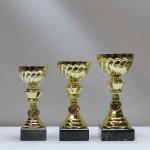 Кубок s20С g65/08/18 - 17,00 руб Кубок s20B g75/09/20 - 18,50 руб Кубок s20A g85/10/22 - 23,00 руб