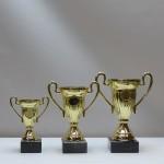 Кубок s21С  g55/CP502-07/16 - 13,00 руб Кубок s21B  g65/CP503-08/18  - 14,00 руб Кубок s21A  g75/CP501-09/20 - 16,50 руб
