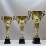 Кубок S25C pl71/U12/37 - 40.00 руб Кубок S25B pl70/U14/40 - 50.00 руб Кубок S25A pl69/U16/46 - 65.00 руб