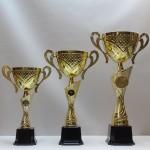 Кубок S26C pl71/U12/34 - 40.00 руб Кубок S26B pl70/U14/40 - 50.00 руб Кубок S26A pl69/U16/47 - 70.00 руб