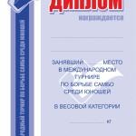 диплом а4 самбо